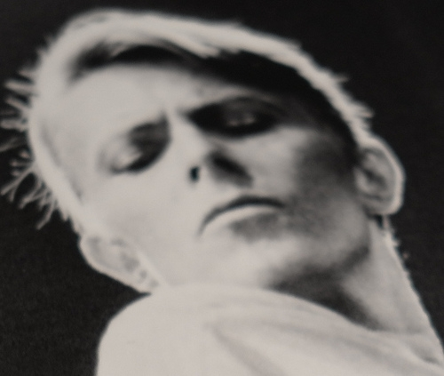 Sukita Bowie: Speed of Life